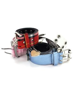 Picture of Assorted fashion belts (Available in a pack of 25)