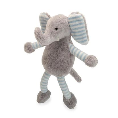 Picture of Baby Long Legs? Elephant Squeaker