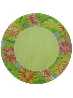 Picture of Daisy border paper plates (Available in a pack of 24)