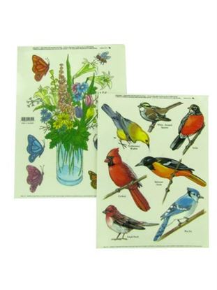 Picture of Birds window clings (Available in a pack of 30)